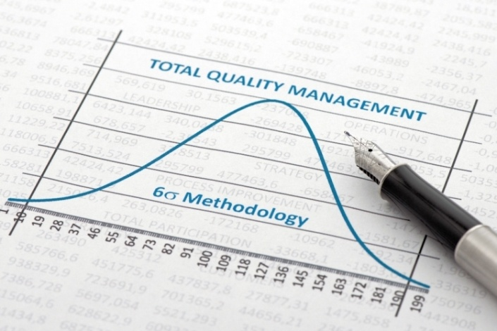 A Beginner's Guide to Six Sigma