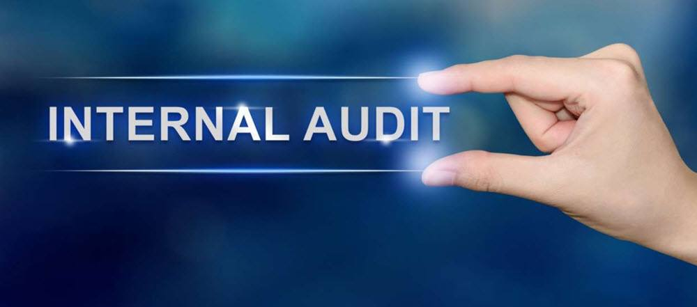 How to Setup Your Internal Audit Function