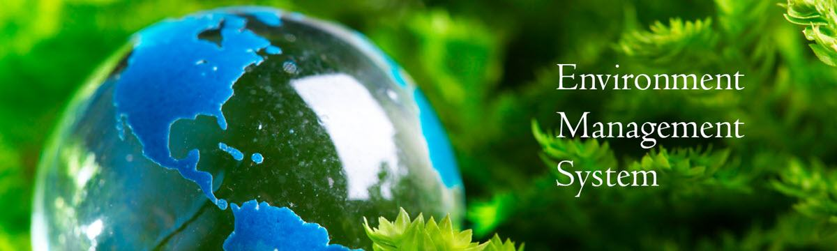 What Is an ISO 14001 Environmental Management System?